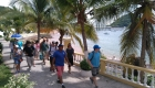 TABOGA ISLAND DAY PASS - WALKING TOUR