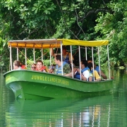 Gatun Jungle Boat 2